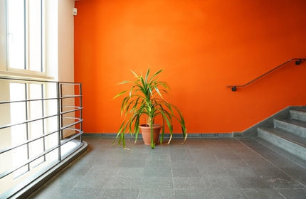 Reasons to go with pro ridgewood painting